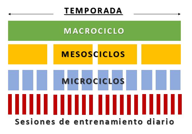 Imagen  www.mundoentrenamiento.com